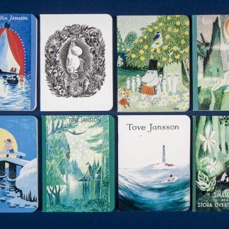 Mini notebooks (381427)
